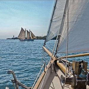 Фотообои Komar Sailing 368 х 254см. (8-526)