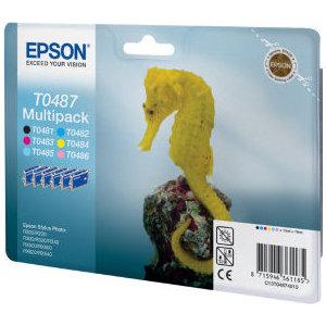Картридж Epson C13T04874010