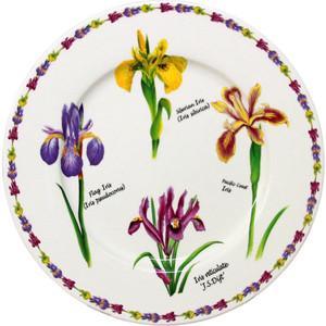 Тарелка закусочная Imari Ирисы (IM35031-A93AL)