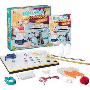 Набор для творчества Bondibon Школа дрессировки Кошки (ВВ1438)