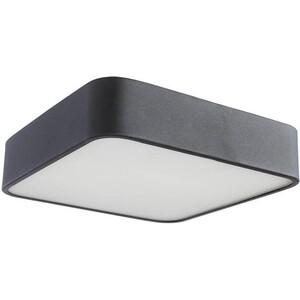 Потолочный светильник Artelamp A7210PL-2BK