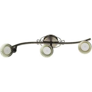 Спот Artelamp A5219PL-3BR artelamp a1357pa 3bs