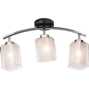 Потолочная люстра Silver Light Victoria 254.59.3