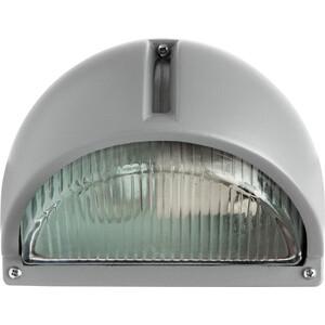 Уличный настенный светильник Artelamp A2801AL-1GY