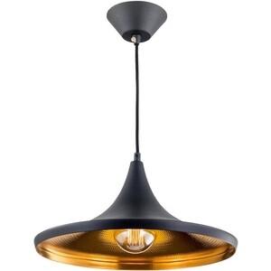Подвесной светильник Citilux CL450210 подвесной светильник эдисон cl450210