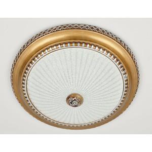 Потолочный светильник Citilux CL425402