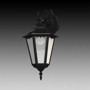 Уличный настенный светильник Eglo 93456