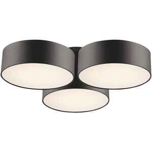 Потолочный светильник Favourite 1514-6C