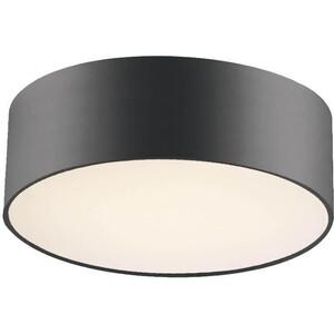 Потолочный светильник Favourite 1514-2C1