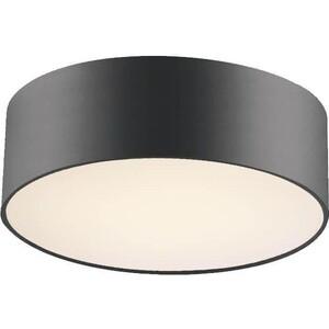 цена на Потолочный светильник Favourite 1514-2C