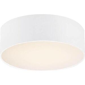 Потолочный светильник Favourite 1515-2C