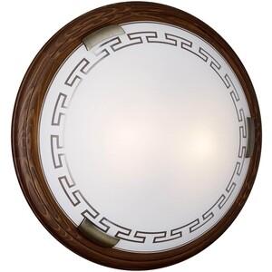 Потолочный светильник Sonex 160/K