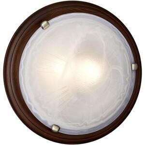 Потолочный светильник Sonex 136/K