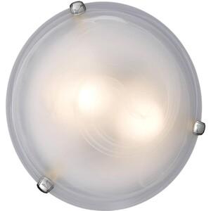 Потолочный светильник Sonex 253 хром