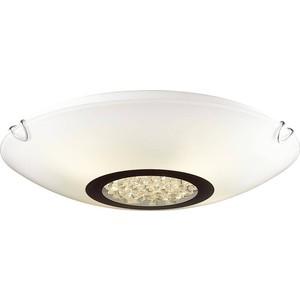 Потолочный светильник Favourite 1694-2C