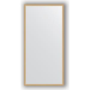Зеркало в багетной раме поворотное Evoform Definite 48x98 см, сосна 22 мм (BY 0687)