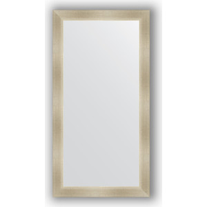 Зеркало в багетной раме поворотное Evoform Definite 54x104 см, травленое серебро 59 мм (BY 0701)