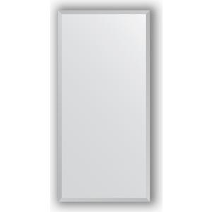 Зеркало в багетной раме поворотное Evoform Definite 46x96 см, сталь 20 мм (BY 1049) все цены