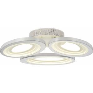 Потолочный светодиодный светильник ST-Luce SL895.502.03