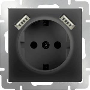 Фото - Розетка с заземлением, шторками и USBx2 Werkel черный матовый WL08-SKGS-USBx2-IP20 розетка с заземлением werkel шторками и 2хusb без рамки слоновая кость wl03 skgs usbx2 ip20