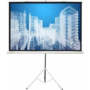 лучшая цена Экран для проектора Cactus CS-PST-104x186 16:9 напольный