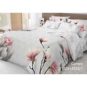 Комплект постельного белья Волшебная ночь Евро, ранфорс, Cameo с наволочками 70x70 (702258)