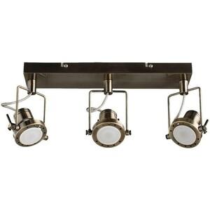 Спот Artelamp A4300PL-3AB цена и фото
