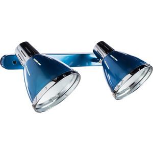 Спот Artelamp A2215AP-2BL