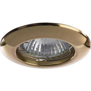 Точечный светильник Artelamp A1203PL-1GO