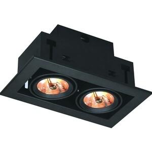 Встраиваемый светильник Arte Lamp A5930PL-2BK встраиваемый светильник artelamp a5930pl 3bk