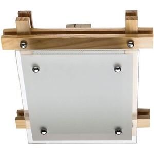 Потолочный светильник Artelamp A6460PL-1BR