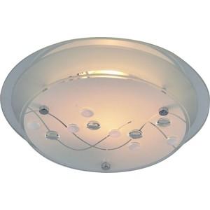 Потолочный светильник Artelamp A4890PL-2CC
