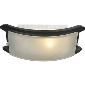 Потолочный светильник Artelamp A6462AP-1CK
