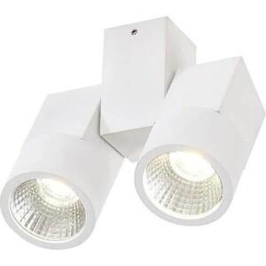 Потолочный светодиодный светильник Citilux CL556100