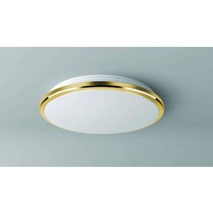 Потолочный светодиодный светильник Citilux CL702162W