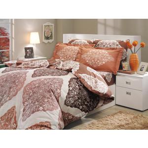 цена Комплект постельного белья Hobby home collection Семейный, поплин, Amanda, коричневый (1501000032) онлайн в 2017 году