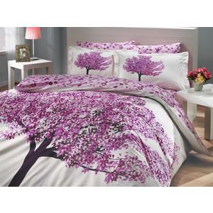 цена Комплект постельного белья Hobby home collection 2-х сп, поплин, Florentina, фиолетовый (1501000653) онлайн в 2017 году