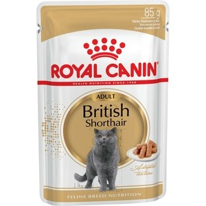 Паучи Royal Canin British Shorthair Adult кусочки в соусе для кошек британской короткошерстной породы 85г (540001)