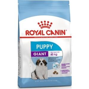 Сухой корм Royal Canin Giant Puppy для щенков очень крупных пород до 8 месяцев 15кг (195150) удобрение лебозол нутриплант 8 8 6 avgust 5 мл