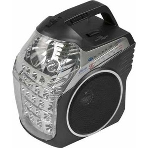 Радиоприемник Ritmix RPR-505 цена и фото