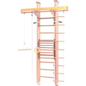 Детский спортивный комплекс Карусель 2Д.02.02 к стене (с тренажером для осанки №2) Светлый