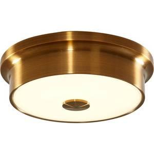 Потолочный светодиодный светильник Citilux CL706212