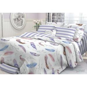 Комплект постельного белья Verossa Constante Семейный, перкаль, Plumelent (707031) цена