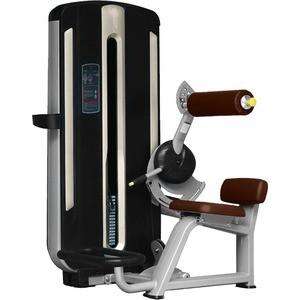 Разгибание спины Bronze Gym MNM-009