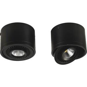 Потолочный светильник Favourite 1779-1C