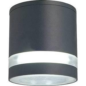 Уличный потолочный светильник Favourite 1830-1U