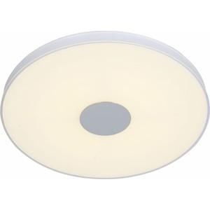Потолочный светодиодный светильник ST-Luce SL473.552.01