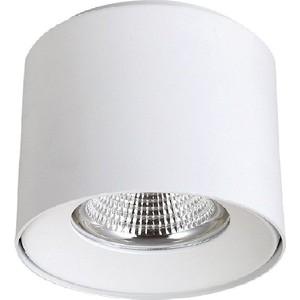 Потолочный светодиодный светильник Crystal Lux CLT 522C138 WH потолочный светильник crystal lux clt 420c wh