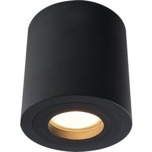 Потолочный светильник Divinare 1460/04 PL-1
