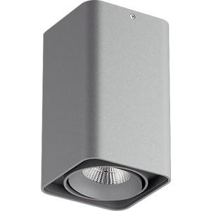 Потолочный светильник Lightstar 212539